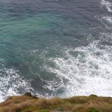 Mighty Ocean